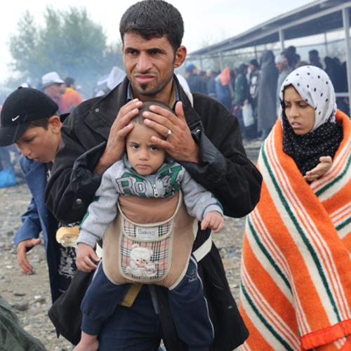 Refugee Response